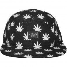 Casquette 5 Panel Cayler And Sons - Budz And Stripes Cap - Black / White