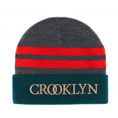 Bonnet Cayler And Sons - Crooklyn Beanie - Grey / Forest Green / Red